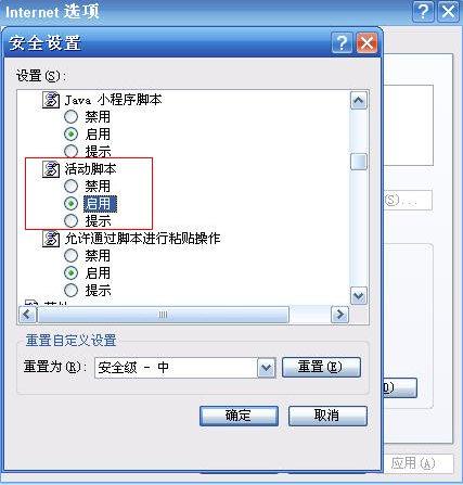 中文版IE6启用javascript第三步